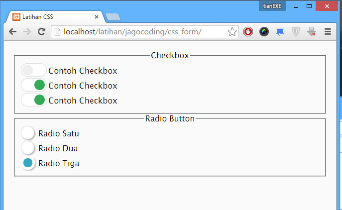 Hasil Custom Checkbox dan Radio Button